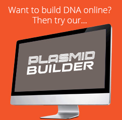 Plasmid Builder